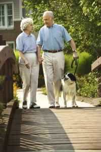 retired senior man and woman walking dog on bridge in spring